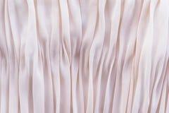 Bakgrund av liggande veck f?r koralltyg p? tabellen royaltyfria foton