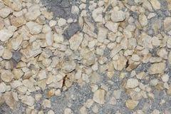 Bakgrund av liten kiselstenar och sand Royaltyfri Fotografi