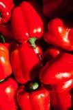 Bakgrund av många röda peppar Arkivfoto
