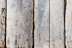 Bakgrund av parallella träbräden Arkivbild