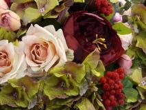 Bakgrund av röda och rosa rosor i vattenfärgstil Blom- bakgrund av rosor, av rönnaska- och gräsplansidor Närbild Arkivbilder