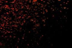 Bakgrund av rött luftar bubblar i bevattna på en svart Royaltyfria Foton
