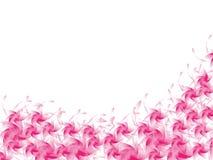 Bakgrund av rosa färgblomman Arkivfoton