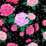 Bakgrund av rosor och cirklar 2-01 Arkivbild