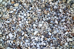 Bakgrund av runda små stenar Arkivbild