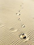 Bakgrund av sand skvalpar på stranden med tryck av fot Royaltyfria Foton
