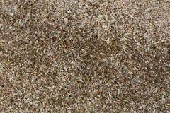 Bakgrund av små kiselstenar, kulört exponeringsglas fragmenterar, och stycken av havet beskjuter royaltyfri fotografi