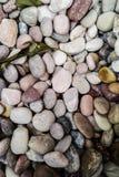 Bakgrund av små stenar Royaltyfri Fotografi