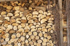 Bakgrund av staplat trä Klart vedträ Olika sorter av träjournaler som överst staplas av de Royaltyfri Foto