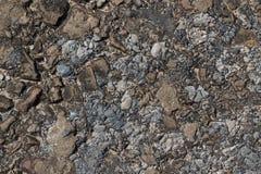 Bakgrund av stenar och kiselstenar, textur Fotografering för Bildbyråer