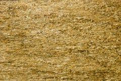 Bakgrund av stenen med guld- fläckar Stenen vaggar med guld- partiklar Royaltyfri Foto