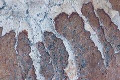 Bakgrund av stenen naturlig sten Arkivfoton