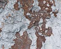 Bakgrund av stenen naturlig sten Arkivbilder