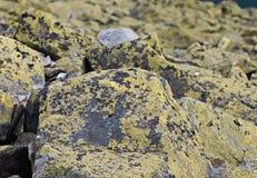 Bakgrund av stenen naturlig sten Berg Arkivbilder