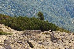 Bakgrund av stenen naturlig sten Berg Royaltyfria Foton