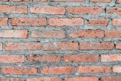 Bakgrund av tegelstenväggen Royaltyfri Foto