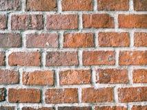 Bakgrund av tegelstenväggen Fotografering för Bildbyråer