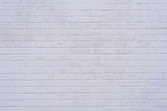 Bakgrund av tegelstenväggtextur Royaltyfri Foto