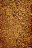 Bakgrund av torkad förtorkad jordsmutsjordning Fotografering för Bildbyråer