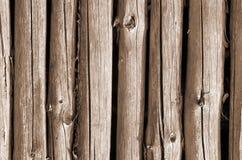 Bakgrund av trä Arkivfoto