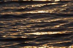 Bakgrund av vatten i strålarna av den guld- solen Royaltyfri Bild
