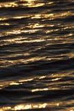Bakgrund av vatten i strålarna av den guld- solen Arkivfoton