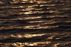 Bakgrund av vatten i strålarna av den guld- solen Arkivfoto