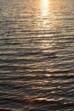 Bakgrund av vatten i strålarna av den guld- solen Royaltyfri Fotografi