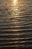 Bakgrund av vatten i strålarna av den guld- solen Royaltyfri Foto