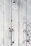 Bakgrund av vita gamla slitna bräden Arkivbild