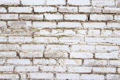 Bakgrund av vita tegelstenar Fotografering för Bildbyråer