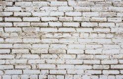 Bakgrund av vita tegelstenar Royaltyfria Bilder