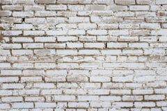 Bakgrund av vita tegelstenar Royaltyfri Bild