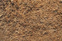 Bakgrund av wood shavings Arkivfoton