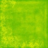bakgrund bedrövad limefrukt Royaltyfri Foto