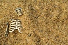 bakgrund benar ur skelett Royaltyfri Bild