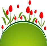 bakgrund blommar illustrativektorn Royaltyfria Foton