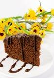 bakgrund blommar pepparkakaplattayellow Fotografering för Bildbyråer