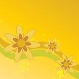 bakgrund blommar sommar Arkivbilder
