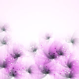 bakgrund blommar vektorn Arkivbild