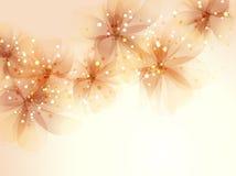 bakgrund blommar vektorn Royaltyfria Bilder