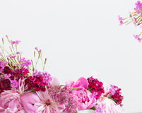 bakgrund blommar white Arkivfoton