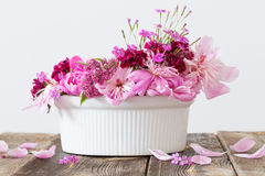 bakgrund blommar white Arkivbild