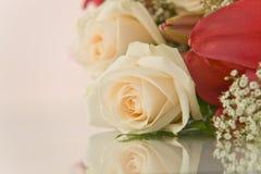 bakgrund blommar white Royaltyfri Fotografi