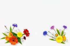 bakgrund blommar white Bästa sikt, lekmanna- lägenhet Royaltyfri Bild