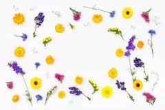 bakgrund blommar white Bästa sikt, lekmanna- lägenhet Royaltyfri Foto