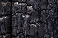 Bakgrund - bränt till kol trä royaltyfri fotografi