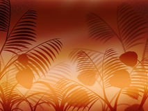 Bakgrund Copyspace indikerar blom- abstrakt begrepp och flora Arkivfoto