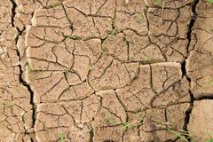 bakgrund cracked dof torkat grunt övre för jord textur av jorden med sprickor Royaltyfria Bilder