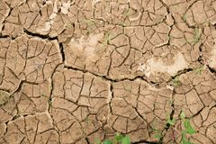 bakgrund cracked dof torkat grunt övre för jord textur av jorden med sprickor Royaltyfria Foton